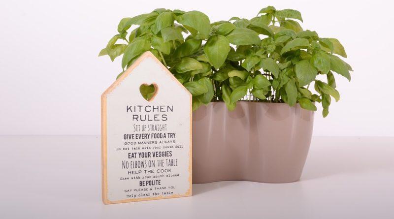 Aj bazalka a iné bylinky zo supermarketu môžu vydržať dlho. Vieme, ako na to