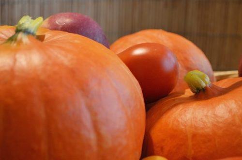 Najčastejšie choroby napadajúce zahrádkářovu úrodu