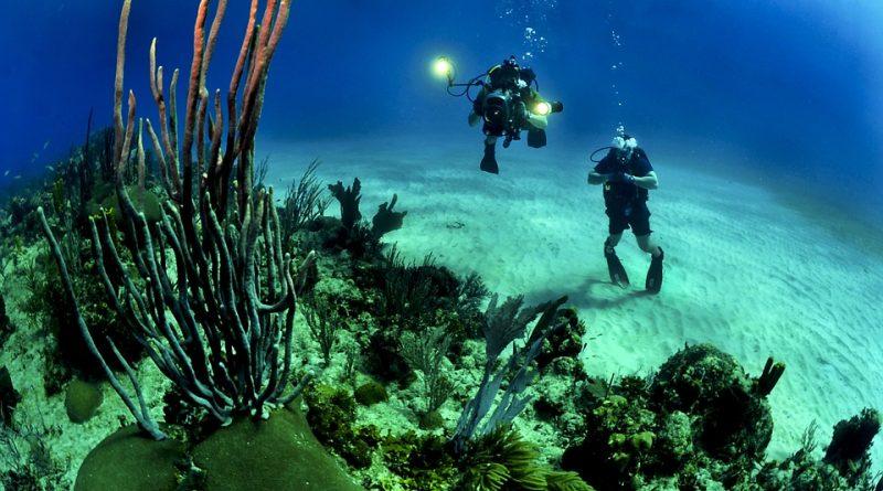 V akých destináciách zažijete nezabudnuteľné potápanie?