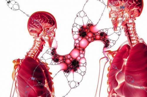 Zaujímavé fakty o ľudskom tele, ktorá vás prekvapí