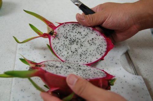 Dragon fruit ako najviac fotogenické ovocie. Je naviac aj zdravé